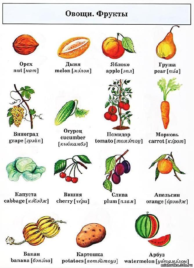 ягоды в картинках на английском получилось случае
