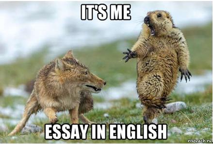Подборка Мемов На Английском - Учим английский вместе