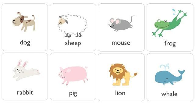 Животные - Любимый Объект Маленьких Детей - Учим английский вместе