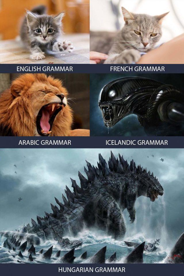 Английский Для Hr (english For Hr) — Словарь Терминов Для Рекрутеров - Учим английский вместе