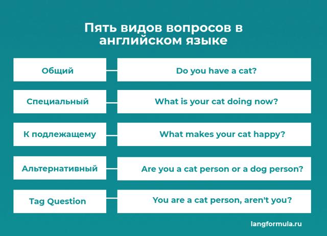 Пять Видов Вопросов В Английском Языке - Учим английский вместе