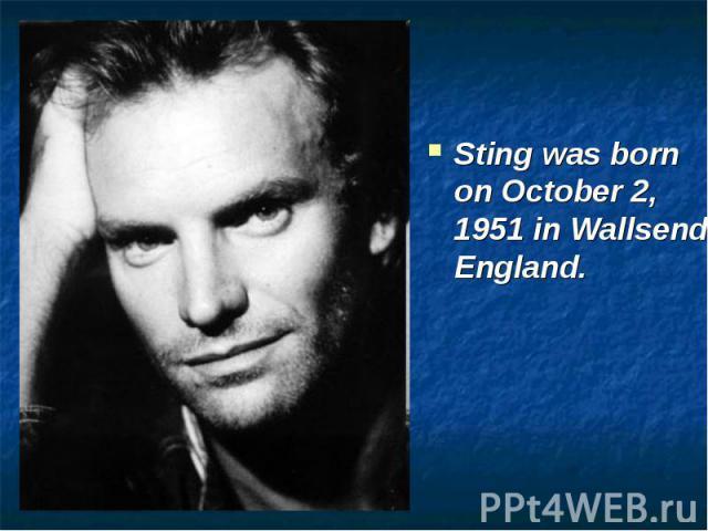 Sting И Его Творчество На Английском - Учим английский вместе