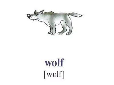 «Работа Не Волк…» — Все О Бизнесе И Работе В Английских Идиомах - Учим английский вместе